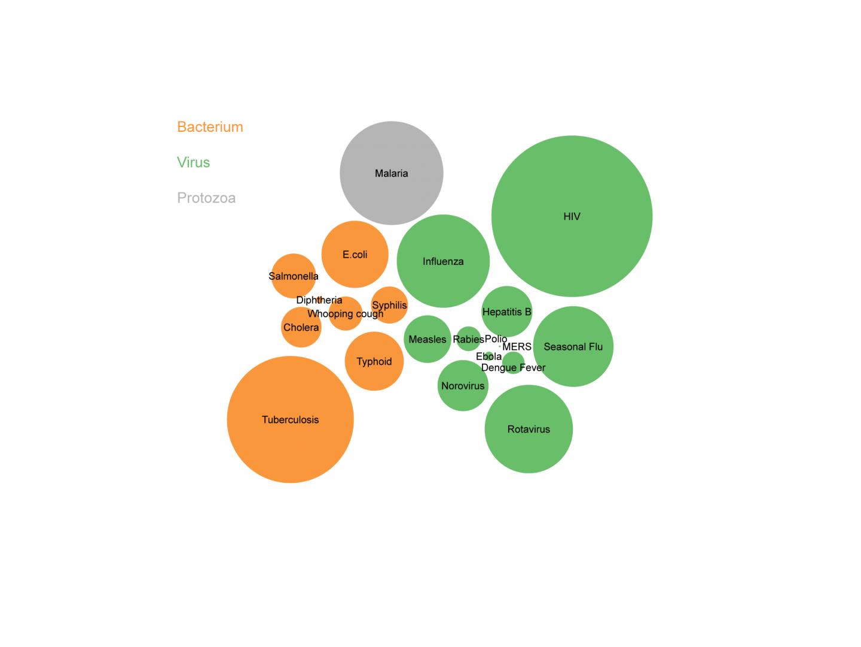 tree stem diagram tree bubbler diagram #13
