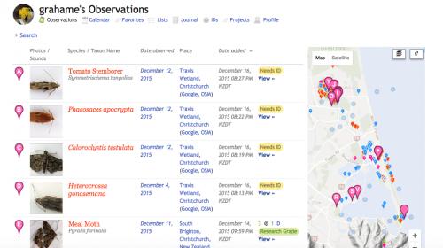 observations_inat