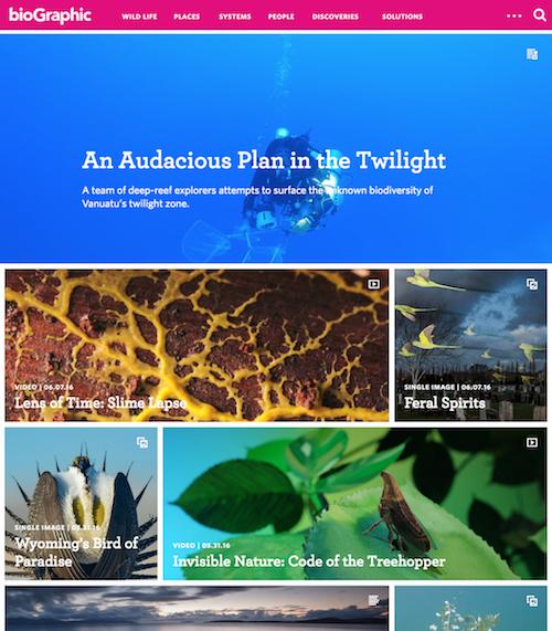 Biographic Homepage